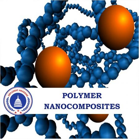 Polymer Nanocomposites